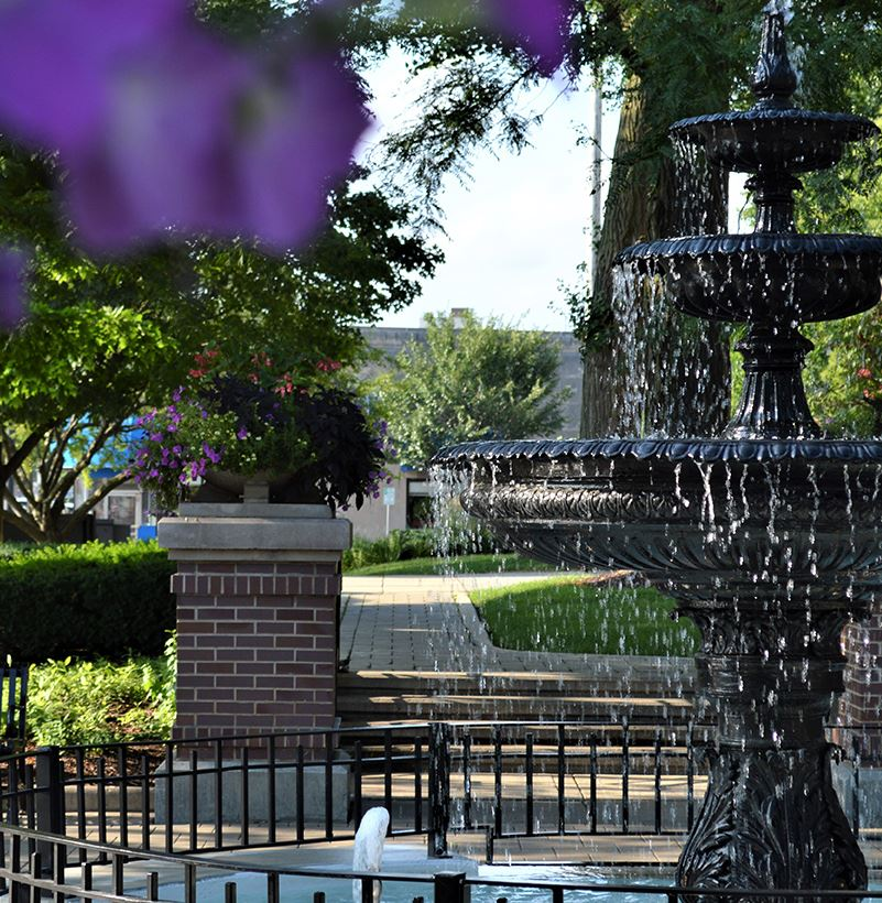 Fountain with purple flowers